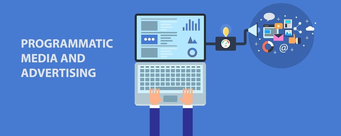 programmatic_learning